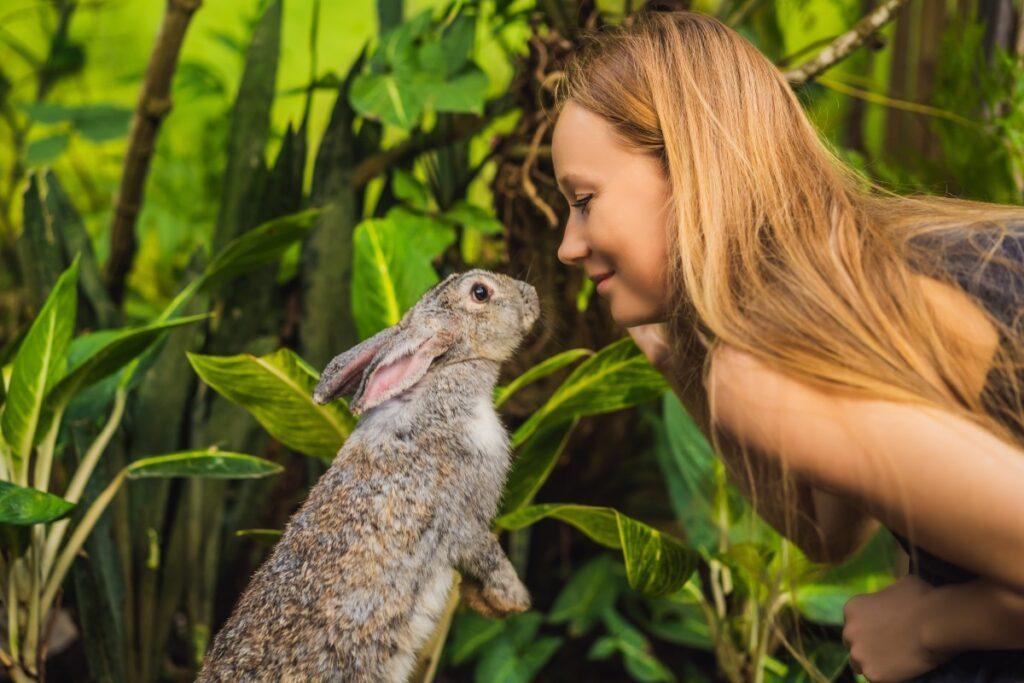 królik-kobieta