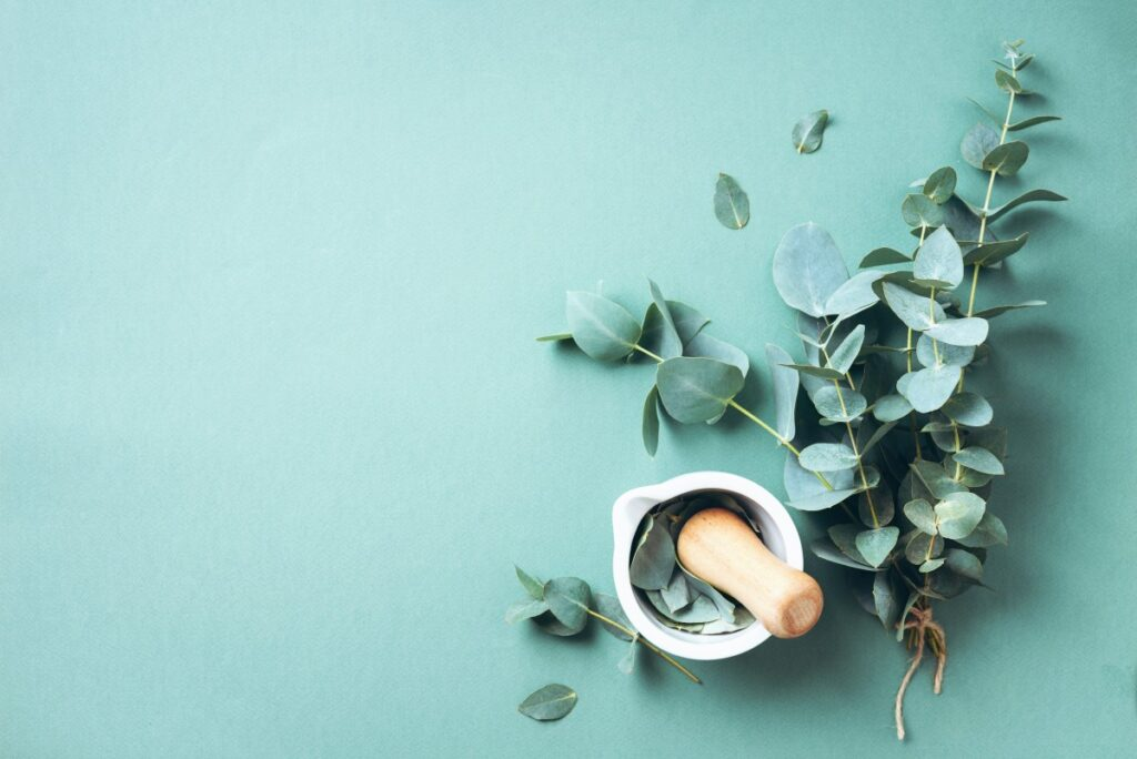 kosmetyki-rośliny